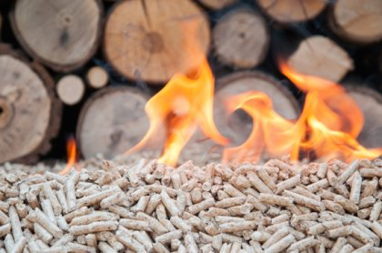 Advantages of biomass fuel