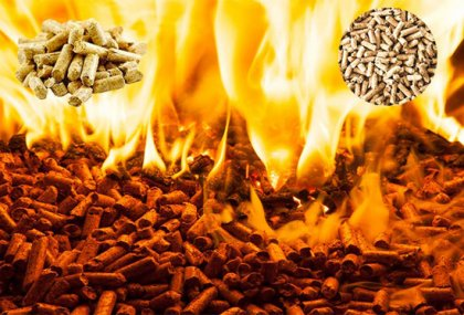 Analysis of combustion characteristics of different kinds of biomass