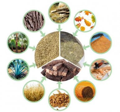 Marketing strategy for biomass pellet fuel