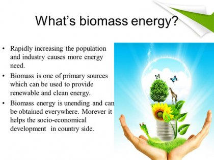 What's the biomass energy's impact on ecological environment?