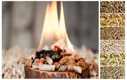 How to promote wood pellet machine fuel in China