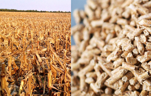 Do you know what corn pellet machine can do?
